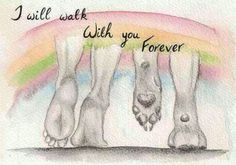 We will walk with you forever... Though some of our human friends have dumped us thinking that we've lost our sanity, because we love talking to you... about you! http://welcomedoglovers.blogspot.com
