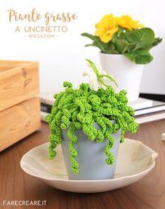 Uncinetto schemi piante grasse facili: pianta riccia con fiore - pattern free.