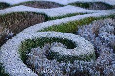 Abbey House Garden, Malmesbury Winter Garden, Stepping Stones, Paths, January, Home And Garden, Outdoor Decor, House, Stair Risers, Home