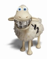 sheep with braces :)