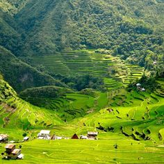 Because of migration, climate change, and technological advances, the incredibly beautiful rice terraces of the Philippines are one of the world's most endangered sites. Photo courtesy of kgullon on Instagram.