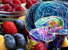 by S. Ali Myers Charge up your third eye (pineal gland) with high-vibrating, nutritionally enriched foods and drinks! Most people, especially in America, are consuming a diet that is detrimental to…