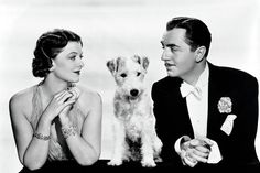 Another terrier would go on to play the role in four sequels as well as the Thin Man television series.