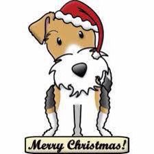 Ready to party with you! Chien Fox Terrier, Fox Terriers, Wire Fox Terrier, Merry Christmas, Xmas, Christmas Things, Christmas Cards, Lakeland Terrier, Happy Art
