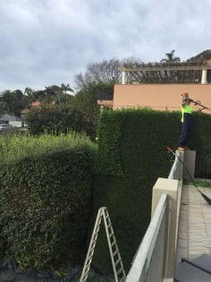 Sydney Soft landscaping is an efficient method of creating the garden of your dreams without undergoing any major structural changes and thus minimising the total costs of the project.