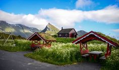 Country side, Lofoten