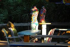 Table for Two! Photo by Melissa Ferguson -- National Geographic Your Shot