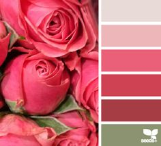 11 beautiful paint palettes inspired by your favorite flowers