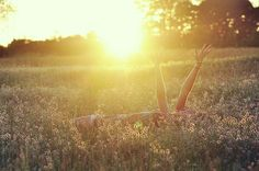 i love pictures in fields