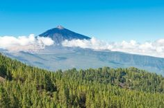 Mount Teide rising above the clouds