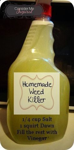 Easy enough and not toxic. Make Your Own At Home- Weed Killer