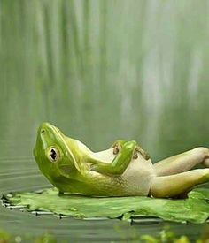 .Relax...