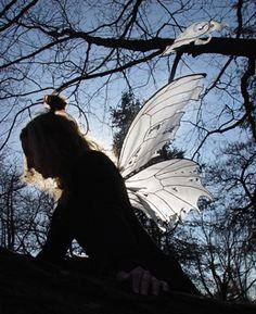 Really neat fairy wings