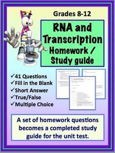 RNA (Ribonucleic Acid) Transcription Homework Assignment /