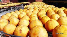 20151016 新竹味衛佳柿餅觀光農場(長青攝影班外拍景點之一)