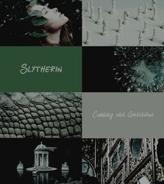 HP Aesthetics: Slytherin