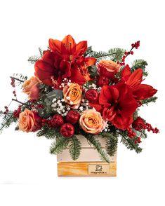 Dăruiește un cadou din suflet și inima cuiva drag se va umple de bucurie. Alege un aranjament în culori calde, cu Hyppericum roșu, trandafiri portocalii și accente strălucitoare care oferă un aer festiv. Crenguțele parfumate de brad și ramurile de Ilex sunt elemente specifice Crăciunului, așa că acest aranjament se va încadra perfect în căminul cuiva drag. #christmas #flowerarrangement #xmas #aranjamentcraciun Christmas Art, Magnolia, Floral Wreath, Wreaths, Home Decor, Fragrance, Floral Crown, Decoration Home, Door Wreaths