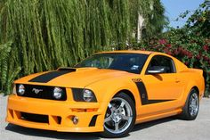 Roush 427R Mustang | 2007 Roush 427R Mustang Coupe Pictures - 2007 Roush 427R Mustang Coupe ...