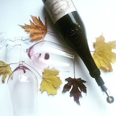 Enjoy your red wine using the winechill with aerator