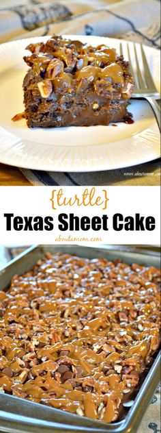 This Turtle Texas Sheet Cake recipe is a delicious and unique take on the traditional Texas Sheet Cake. The addition of caramel and pecans makes this a decadent dessert. Sheet Cake Recipes, Cupcake Recipes, Cupcake Cakes, Dessert Recipes, Turtle Sheet Cake Recipe, Turtle Recipe, Recipe Sheet, Cupcakes, Köstliche Desserts