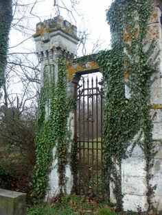 Found this wandering (me not the gate) through the french countryside. I love doors and gates.