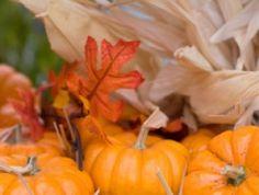 La calabaza: principales variedades y tipos.