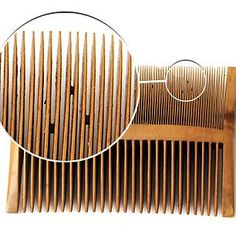A nit comb found on Henry VIII's Mary Rose, with preserved nits still in the comb.