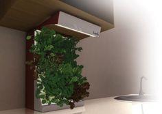 Fresh, pequeño huerto vertical