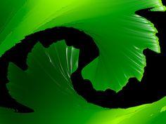 Pounamu  The Maori word for New Zealand greenstone.