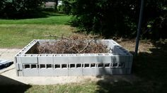 Diy fire pit for less than $100. Cinder blocks from Lowe's.  Remember a pit need air space so flip some cinder blocks over to the open side so it can burn.