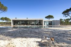 Contemporary Comporta House In Grândola, Portugal