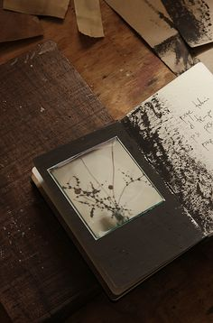 a notebook as a new diary