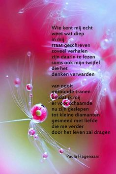 Gedichten Paula Hagenaars Thing 1, Poems, Life Quotes, Sayings, School, Dutch Quotes, Inspirational, Quotes About Life, Quote Life