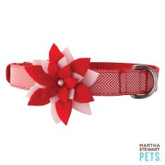 How cute for Penny @Debbie Canning -Martha Stewart Pets™ Candy Cane Poinsettia Collar - PetSmart