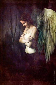 Darlin'Angel, Foto-Mixed Media,Plexi, by Suus Suiker