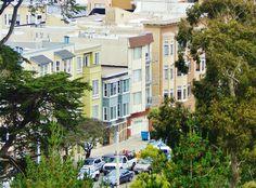 golden gate park view, san fran Golden Gate Park, San Francisco, Mansions, House Styles, Home, Decor, Decoration, House, Villas