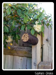 Sophia's Choice Green Lifestyle Blog: Our Groovebulb Upcycling Challenge – A Masonry Bee House