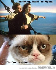 Funny pictures about Grumpy Cat doesn't care about Titanic. Oh, and cool pics about Grumpy Cat doesn't care about Titanic. Also, Grumpy Cat doesn't care about Titanic. Grumpy Cat Quotes, Funny Grumpy Cat Memes, Cat Jokes, Funny Animal Jokes, Cute Funny Animals, Funny Animal Pictures, Animal Memes, Funny Cute, Cute Cats