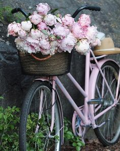 So beautiful! Peonies remind me of my childhood. So beautiful! Peonies remind me of my childhood. Pretty In Pink, Beautiful Flowers, Exotic Flowers, Purple Flowers, Deco Champetre, Bicycle Art, Bicycle Shop, Bicycle Design, Vintage Bicycles