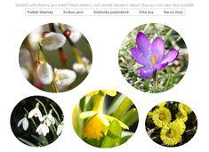 Pracovní list: Jarní květy Jar, Halloween, Interactive Notebooks, Jars, Glass, Spooky Halloween