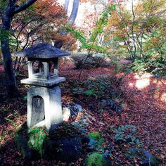 Let life be beautiful like summer flowers And Death like autumn leaves.  #楓葉 #嵐山 #秋の京都 #宝筐院 #もみじ #京都