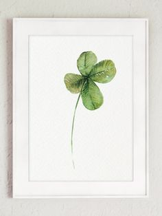 Four Leaf Clover Art Print, Good Luck Charm Decor, Green Nature Wildlife Watercolor Painting, Meadow Flower, Modern Floral Garden Home Decor by ColorWatercolor on Etsy