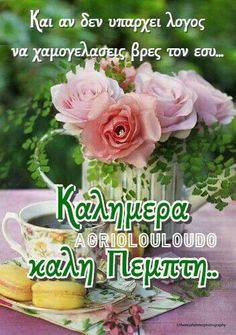 Beautiful Pink Roses, Good Morning, Plants, Pictures, Merry Christmas Gif, Buen Dia, Photos, Bonjour, Plant