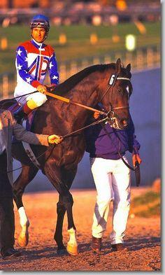 GREAT RACEHORSES  - cigar_96