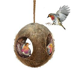 SunGrow Coco Bird Hut Natural Coconut Shell Bird House and Bird Food Dispenser -- You can get more details by clicking on the image.Note:It is affiliate link to Amazon.