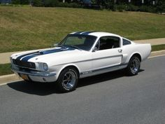 65 Shelby  Mustang Fastback
