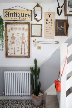 Hallway colour schemes – Hallway colour ideas – Hallway colours - - First impressions count for a lot, so choosing the right hallway colour scheme is more important than you might think. Cream Hallway, Grey And White Hallway, Bright Hallway, Dado Rail Hallway, Hallway Paint, Hallway Walls, Hallway Colour Schemes, Hallway Colours, Color Schemes