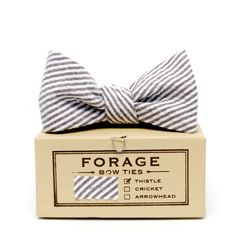 forage — birch {bow tie}