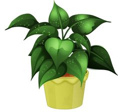 flower pot 19.png