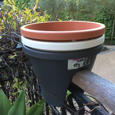 If you know a keen gardener - these pots make a thoughtful gift idea. Thoughtful Gifts, Gifts For Him, Planter Pots, Flowers, How To Make, Florals, Flower, Blossoms